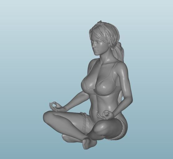 Plastic resin Figure 18+(Z198)