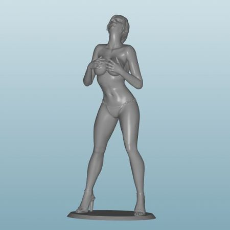 Plastic resin Figure 18+(Z206)
