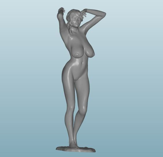 Plastic resin Figure 18+(Z247)