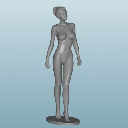 Plastic resin Figure 18+(Z25)