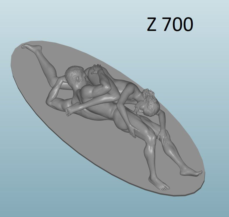 Figure of Sex 18+(Z700)